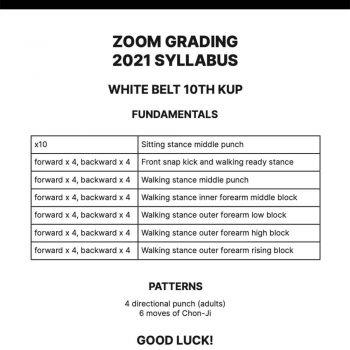 miles martial arts - social content - zoom grading